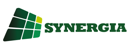 Synergia Consultores